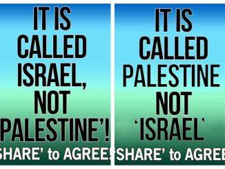 facebook-israel-video-network-f5778f8711686a343bb18720293eadaf19cf2fd6