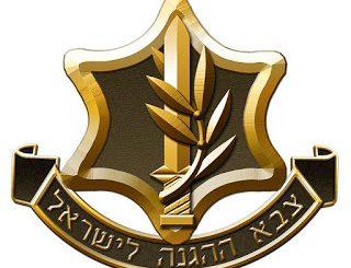 idf-logo-25ea600e1968f10633037ffb8d8b84b492ea51ba