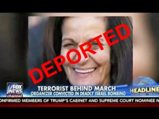 Rasmea-Odeh-Fox-News-Deported-620x431-ebd947393580e87f9affcbe809b73ef272316322
