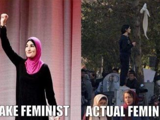 Fake-Feminists-v-Iran-82a09c43ad1f43bb8d6e6d59234f6249a5be3803