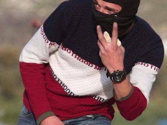 sweater-9546ff4aeb2a4e858d6dc9a77d4621c23146d7ee