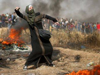 gaza-protester-419d7e4b91ea761b12cf2f004018063ae6d21aa4