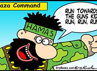 Gaza_comand-cd165ca8ef009c8d545f3f7fce4ef1e965d49fac