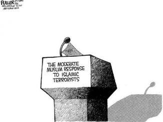 moderate_muslim-a1634507ff97b94cb8b38ec3befef0388c0551f9