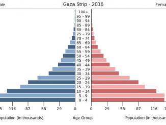 gaza-strip-population-pyramid-2016-2b79b45eaad490ae6706f3a86f04bdc2ad56c9f1