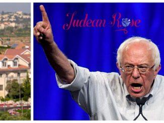 Settlements+Bernie+%281%29-b085fc698a07bafba024b378d0706608b3e8df46