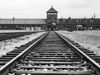 Auschwitz-Birkenau-Poland-1129x752.jpg.optimal-fcc489dd43819a7d186856b2a0568918fdb1bfc5